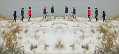 """""""Promenade sur les dunes"""" De Banjaard, Kamperland, Noord-Beveland, Zeelande, Nederland (claude lina) Tags: claudelina nederland hollande paysbas zeelande zeeland merdunord noordzee plage dune beach debanjaard kamperland noordbeveland"""