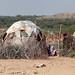 A somali hut called aqal in the desert, Togdheer region, Burao, Somaliland