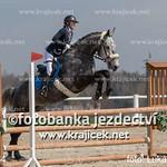 216L_0564 thumbnail