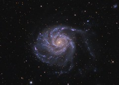 M101 (Roberto_Mosca) Tags: m101 astronomy astronomia galaxy qhy367c pinwheel deep sky
