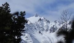Aiguilles du Tour, Plateau du Trient (bulbocode909) Tags: valais suisse montchemin montagnes nature neige plateaudutrient aiguillesdutour nuages paysages arbres printemps bleu massifdumontblanc