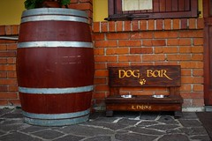 Dog Bar (ornella sartore) Tags: bar colori allaperto particolari morimondo