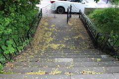 Hextable,6 (doojohn701) Tags: stairs park leaves railings car white gate hextable uk kent concrete 8 vegetation wall