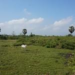 Prasat Nokor Khmer Rouge Killing Fields, Kampong Cham thumbnail