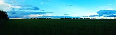 Esteledik a vidéki tájon (Ják közelében) (milankalman) Tags: landscape evening summer countryside