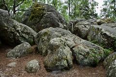 Site du Rocher Canon, Forêt domaniale de Fontainebleau (Christian Giusti) Tags: géographie geography géologie geology géomorphologie geomorphology paysage landscape forêt forest biodiversité biodiversity géodiversité geodiversity patrimoinenaturel naturalheritage patrimoineculturel culturalheritage
