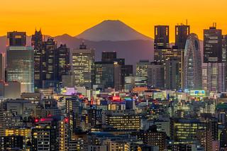 Shinjuku Magic Sunset
