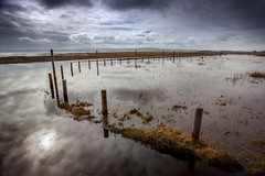 Flooded Causeway (Julian Barker) Tags: lindisfarne causeway holy island northumberland north east england great britain uk europe water flood flooding sun reflection poles posts fence diffused road julian barker canon dslr 5d mkii sky cloud cloudscape mood