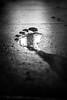 Footsteps on the moon (Black&Light Streetphotographie) Tags: monochrome mono menschen menschenbilder leute people personen portrait urban wow water wasser tiefenschärfe fullframe dof deepoffield sony streetshots streets streetshooting schwarzweis streetportrait street streetphotographie fullfraime vollformat city closeup blackandwhite blackwhite bw bokeh bokehlicious