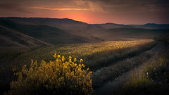 Red Dawn and Tuscan countryside. (Massetti Fabrizio) Tags: sunrise sun sunlight sunset sanquirico siena iq140 italia italiy phaseone pienza panorami phaseonep40 cambo schneider landscape landscapes light rural red yellow giallo green gold
