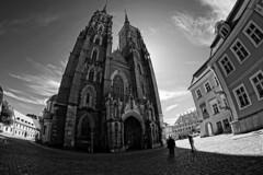 Archikatedra św. Jana Chrzciciela- Wrocław Cathedral (petrwag) Tags: sonya6500 samyang8mm fisheye bw blackandwhite blancoynegro blackwhite černobílé noiretblanc noirblanc manuallens