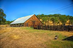 """Barn_19 (DonBantumPhotography.com) Tags: landscapes barns northerncalifornia """"donbantumphotographycom"""" """"donbantumcom"""" """"nikon d800"""" afs nikkor 28300mm 13556g ed vr"""""""