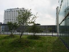 20180525-021 Rotterdam Erasmus MC (SeimenBurum) Tags: rotterdam netherlands erasmus erasmusmc hospital ziekenhuis architecture architectuur garden roofgarden daktuin tuin