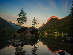 G l o w i n g (davYd&s4rah) Tags: sunrise sun mountain berchtesgaden hintersee germany bavaria lake see tree fels mirror spiegelung longtimeexposure longexposure langzeitbelichtung 60seconds ƒ110 olympus em10markii m1240mm f28 olympusm1240mmf28 uww wideangle weitwinkel panorama landscape nature sky glowing red morning may bayern alps