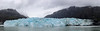 Margerie Glacier (milepost430media.com) Tags: glacier ice frozen slow moving water bay nationalpark alaska cracks dslr canon 5d markiv blue white overcast scenery scenic naure natural beautiful travel tourism tourist holiday vacation panoramic