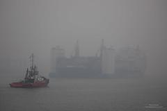 Foggy Day (Peet de Rouw) Tags: port portofrotterdam fog water calandkanaal europoort xinguanghua heavylift ships mist nevel peetderouw denachtdienst canon5dmarkiv