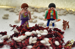 Harvest (ingcuevas) Tags: harvest cosecha tiny small bean beans seeds flower miniature miniaturas cute playmobil colorful colors shine vibrant childhood