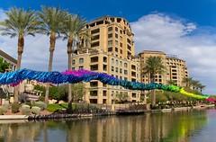 Good morning Scottsdale! (Coisroux) Tags: scottsdale arizona canal artwork reflections d5500 nikond palmtrees walkway