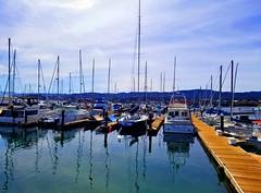 "~""Cause I'm The Duke Of Earl~ (~☮Rigs Rocks☮~) Tags: rigsrocks monterey westcoastbaby centralcoast breakwatermarina montereyboatharbor dukeofearl sailboats genechandler lyndalea"