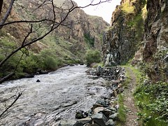 Imnaha to Snake River / Hells Canyon Overnighter (Doug Goodenough) Tags: bicycle bike cycle pedals spokes surly ecr 29 plus packing bikepacking touring overnighter camp camping tent canyon hells oregon river dirt trail singletrack sun sky clouds drg531 drg531p drg53118p drg53118pspringimnaha 2018 18 april spring