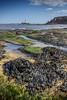 Old Hartley, Northumberland (DM Allan) Tags: oldhartley whitleybay seatonsluice northumberland coast