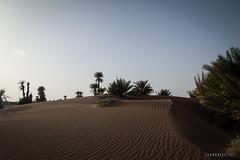 Foum Takkat © Sophie Bigo - SBGD 2018-4 (SBGD_SophieBigo) Tags: photography artdirector freelance sophiebigo morocco maroc trip traveler travelphotography trek desert sahara
