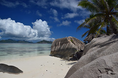 Sun, Sand and a Palm .... (rosch2012) Tags: sky rock water ocean sea tree palm landscape coast beach palme erosion urlaub holiday baden wolken cloud sunny sonnig hell bright daylight tageslicht insel island seychelles ladique