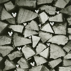 mousehouse (○ Hanna Lee ○) Tags: mice mouse wood lumberjack photography photographer photographers art artist artists tumblrart tumblrartist tumblrartwork tumblrartists tumblrphotography tumblrphotographer tumblrphotographers tumblrartcommunity tumblrartistcommunity tumblrartworkcommunity tumblrphotographercommunity tumblrphotographycommunity mixedmedia mixedmediaart mixedmediaartwork mixedmediaartist mixedmediaartists outsiderart outsiderartist outsiderartwork artnaif naiveart artbrut mixed media watercolor watercolour watercolors watercolours