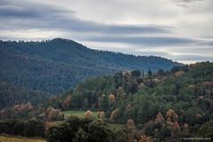 Bosques del Berguedà (SantiMB.Photos) Tags: 2blog 2tumblr 2ig pedret berguedà cercs masía geo:lat=4210748444 geo:lon=188365078 geotagged elpoligondelavalldan cataluna españa esp