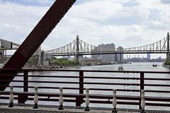 r_180521145_beat0042_a (Mitch Waxman) Tags: eastrivershoreline rooseveltisland rooseveltislandbridge newyork