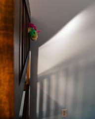 Unicorn in Captivity (HW111 (offline)) Tags: bunkbed shadows unicorn humour