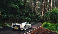 Forest Run - Forza Horizon 3 (AaronChungPhoto) Tags: pagani paganiraduno pacificrun zonda zondas v12 amg australia blackspur