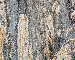 Texture - Concrete (augphoto) Tags: augphotoimagery concrete old texture weathered williamson westvirginia unitedstates