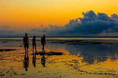 Take a stroll around the island in the warm light of the gorgeous sunset. #islandlife #sunset #indianocean #whyilovekenya