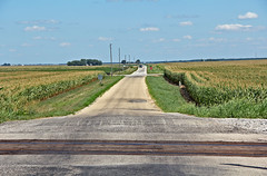 Endless Country Road (craigsanders429) Tags: countryroads illinois cornfields farms road sky cloudsandsky clouds railroadtracks railroadcrossing danforthillinois