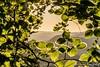Elbsandsteingebirge (haase391) Tags: kleiner winterberg elbsandsteingebirge landschaft sonnenaufgang berge