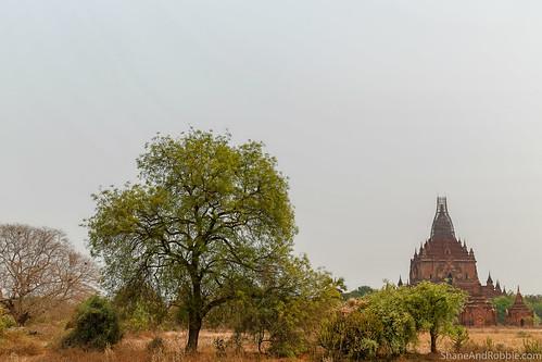 Myanmar-20180324-1281