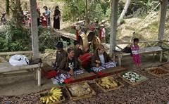 "INDONESIEN, Java, Besuch im Dorf Somokerto, Empfang, 17299/9841 (roba66) Tags: reisen travel explorevoyages urlaub visit roba66 asien südostasien asia eartasia ""southeastasia"" indonesien indonesia ""republikindonesien"" ""republicofindonesia"" indonesiearchipelago inselstaat java dorf village somokorto menschen leute people woman frau"