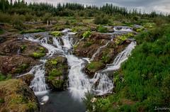 Kermóafoss (waterfall) (einisson) Tags: kermóafoss elliðaárdalur waterfall water trees flowers reykjavík iceland ísland outdoor landscape einisson canon70d