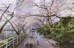 Burrard Station Vancouver (yuanxizhou) Tags: westcoast season spring lifestyle fashion color beautiful urban city portrait pink trees burrardstation vancouver cherryblossoms
