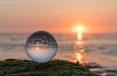 Sunset through a sphere (Martijn van Sabben) Tags: waddenzee ocean zoom nikond500 coolshot cool nature orange perfect d500 nikonnl iamnikon nikon zonsondergang sunset sun ball glassball sphere nationalgeographic ngc