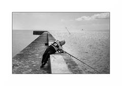 Lomener (Punkrocker*) Tags: nikon s2 rf rangefinder nikkor 50mm 5014 sc film fuji neopan acros 100 nb bwfp port harbor sea people fishermen lomener lorient morbihan bretagne brittany france