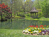 Gibbs Gardens - this week (Vicki's Nature) Tags: gibbsgardens landscape pond garden gazebo tulips reflections water trees woods april spring georgia vickisnature canon s5 2778 paths walkways streamcruisers