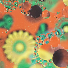 Water and oil (Lydia Brooks) Tags: approved orange yellow green bubbles oil water flowers 70s macro circles canon
