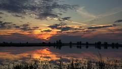 *** (pszcz9) Tags: polska poland przyroda nature natura parknarodowy nationalpark ujściewarty wartamouth zachódsłońca sunset chmury cloud odbicie reflection woda water beautifulearth sony a77 pejzaż landscape