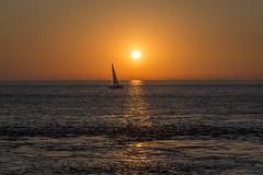 Sunrise Sailing (*Photofreaks*) Tags: adengs wwwphotofreakseu northsea nordsee germany deutschland niedersachsen lowersaxony cuxhaven sailing segeln segelboot segelschiff ship boat yacht sunrise sonnenaufgang