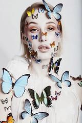 Papillion (katelionis) Tags: butterfly beautiful beauty beautifuilgirl papillion flower model white whitequeen colour conceptual fineart art sunlight flight free freedom