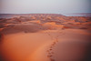Wahiba Expanse (dogslobber) Tags: yellow oman omani middle east arab arabian peninsula travel adventure explore wander wanderlust wahiba sands desert sand footprints