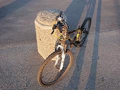 Diamant Flash 24_4371Edit (mtbboy1993) Tags: diamant sykkel stolen nearing missing zoom 24 kidsbike barnesykkel bicycle rusted rust black yellow sundown rawtherapee biketec sykkellås bikelock