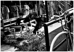 #4937 Harajuku (Potemkin666) Tags: fujifilm xpro2 carlzeiss biogon 35mm f2 street tokyo japan
